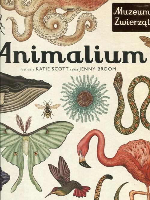 Animalium Broom Jenny