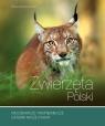 Zwierzęta Polski Kosińska Renata
