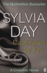 Captivated by You  Day Sylvia