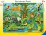 Puzzle ramkowe 11: Zwierzęta lasu deszczowego (5140) Wiek: 3+