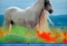 Kalendarz 2009 WL10 Konie rodzinny
