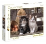 Puzzle High Quality Collection 1000: Lovely Kittens (39340)