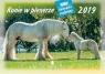 Kalendarz 2019 Rodzinny Konie w plenerze WL10