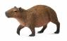 Kapibara M