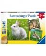 Puzzle 3x49 Delikatne króliczki (08 041 0)