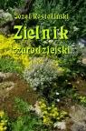 Zielnik czarodziejski to jest zbiór przesądów o roślinach Rostafiński Józef