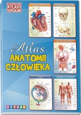 Atlas anatomii człowieka Praca zbiorowa