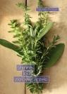 Słynne leki ziołowej apteki Zbigniew Przybylak