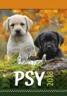 Kalendarz 2018 Wieloplanszowy Psy
