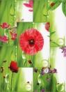 Brulion A5 Top-2000 w linie 96 kartek Ladybird mix