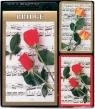 Zestaw brydżowy z bloczkiem Róże 2 talie