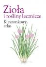 Zioła i rośliny lecznicze Kieszonkowy atlas