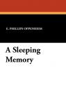 A Sleeping Memory
