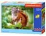 Puzzle Pine Squirrel 260 elementów