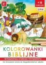 Kolorowanki biblijne Stary Testament - Od stworzenia świata do Ginalska Natalia, Wiśnicka Anna