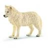 Wilk arktyczny - 14742