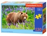 Puzzle Bear On The Meadow 120 (B-13425)