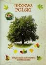 Drzewa Polski Książeczka edukacyjna z naklejkami