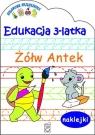 Edukacja 3-latka Żółw Antek