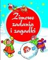 Zimowe zadania i zagadki Anna Wiśniewska, Krzysztof Wiśniewski