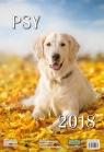 Kalendarz ścienny 2018 Psy