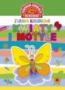 Zabawa kolorami Kwiaty i motyle