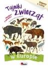 Tajniki zwierząt w Europie Zabawy z kalką Kwiecińska Mirosława