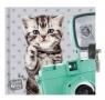 Pamiętnik z kłódką Studio Pets Kot (PER-3640)