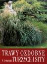 Trawy ozdobne, turzyce i sity