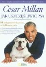 Jak uszczęśliwić psa 98 najlepszych wskazówek od Zaklinacza psów Millan Cesar