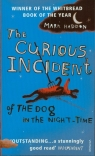 Curious Incident of the Dog in Night-Time