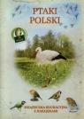 Ptaki Polski Książeczka edukacyjna z naklejkami