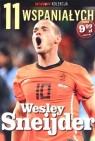 11 wspaniałych. Część 11. Wesley Sneijder