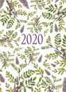Kalendarz 2020 [zioła] praca zbiorowa