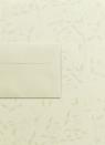 Papeteria kremowa A4 Liana 20 arkuszy + koperty DL Millenium 10 sztuk (206522)