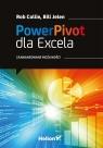 Power Pivot dla Excela Zaawansowane możliwości Jelen Bill, Collie Rob