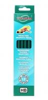 Bezdrzewny ołówek grafitowy HB 12 sztuk