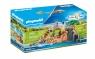 Playmobil Family Fun: Lwy na wybiegu (70343)