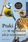 Ptaki w ogrodzie Jak je rozpoznawać Strauß Daniela