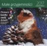KALENDARZ 2017 MAŁE PRZYJEMNOŚCI LIMITED EDITION 30X30 LP55 -