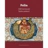 Polin 1000 lat historii Żydów polskich
