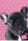 Zeszyt A5 Studio Pets w kratkę 16 kartek