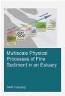 Multiscale Physical Processes of Fine Sediment in an Estuary Yuanyang Wan