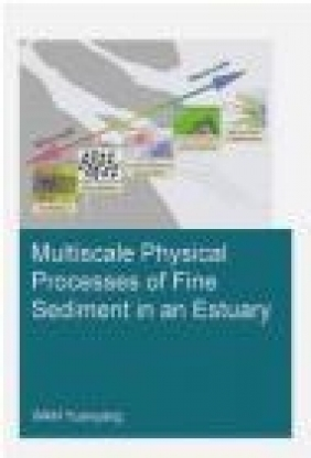 Multiscale Physical Processes of Fine Sediment in an Estuary