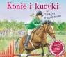 Konie i kucyki. Książka z szablonami