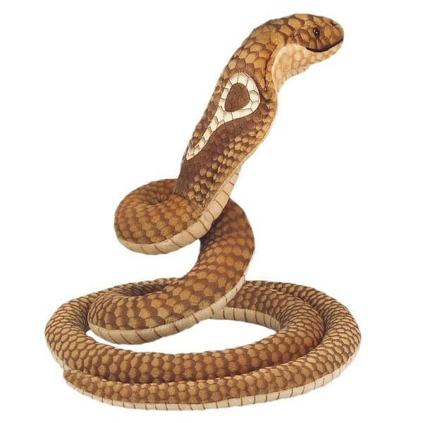 Cobra 70 cm