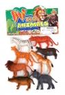 Zwierzęta wild animals