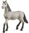 Schleich, Hiszpański młody koń rasy Pura Raza Españolas (13924)