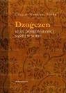 Dzogczen Stan doskonałości samej w sobie Norbu Czogjal Namkhai