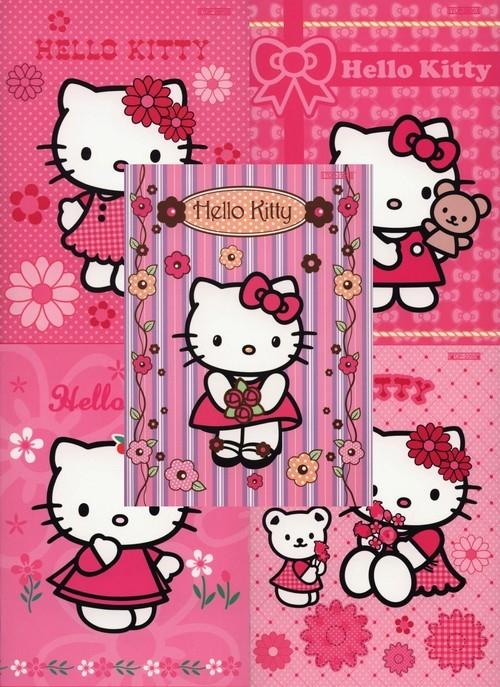 Zeszyt A5 Top-2000 w trzy linie 16 kartek Hello Kitty mix
